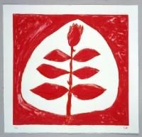 http://carolinanitsch.com/files/gimgs/th-12_12_bou-0276-rose-bour-9340-lores.jpg