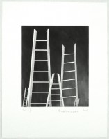 http://carolinanitsch.com/files/gimgs/th-12_BOU-0131-The-Ladders.jpg