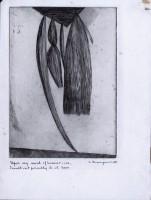 http://carolinanitsch.com/files/gimgs/th-12_BOU-0260-Hanging-Weeds-State-V-LoRes.jpg