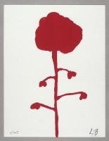 http://carolinanitsch.com/files/gimgs/th-12_BOU-0297-Les-Fleurs-LoRes.jpg