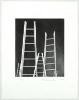 https://carolinanitsch.com/files/gimgs/th-12_BOU-0131-The-Ladders.jpg