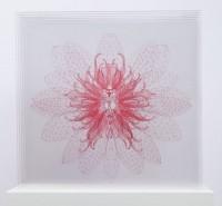 https://carolinanitsch.com/files/gimgs/th-21_DAY-0104-Waterlily-Transporter-pink-LoRes-crop.jpg