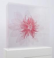 https://carolinanitsch.com/files/gimgs/th-21_DAY-0104-Waterlily-Transporter-pink-sideview-LoRes-crop.jpg
