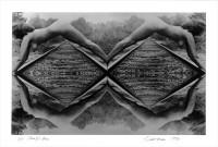 https://carolinanitsch.com/files/gimgs/th-40_40_schneemann-carolee-parallel-axis-signed-hi-res.jpg