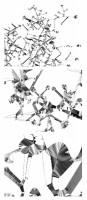 https://carolinanitsch.com/files/gimgs/th-43_43_shotz-alyson-3-steps-closer-all-3-drawings.jpg